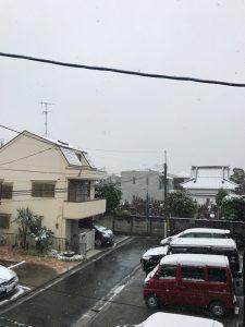 11:30 東京都中野区 54年ぶりの11月の東京初雪。ホントに手がかじかむほど寒いです。1時間ほど前はかなりの雪でしたが、今は雨を多く含んだみぞれになっています。