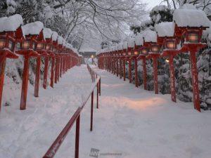 15日08:11 京都市左京区貴船神社 今は貴船神社まで来ています。雪がフワフワからシンシンレベルで降り続いていますが、時折青空が見える空模様となっています。